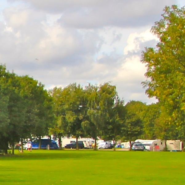rally-field1